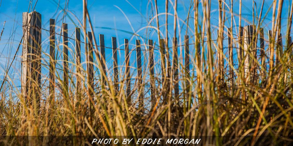 Destin-Beach-Photo-14